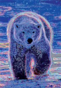 Toile ours polaire exposition Saints de Glace 2008