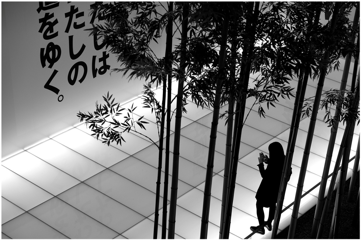 Viviane_Roch_Japon
