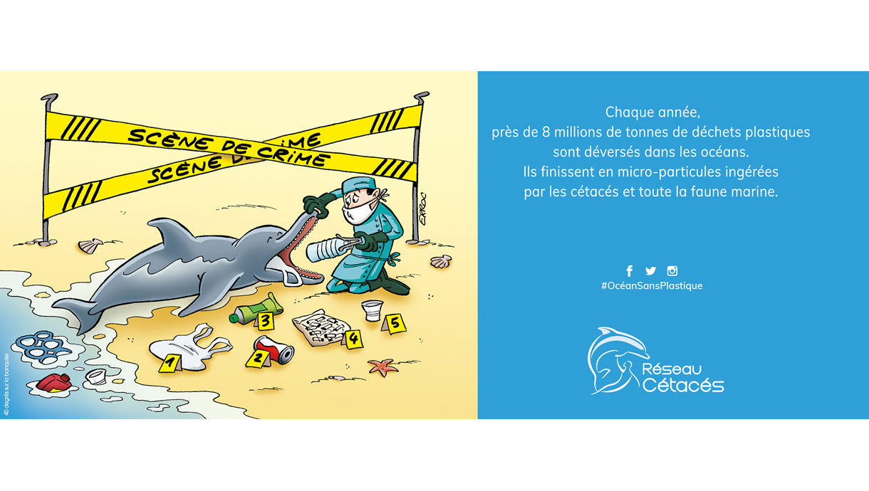 Campagne-anti-plastique-reseau-cetace